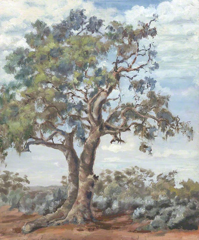 Brown creek gum and saltbush by Susan Dorothea White