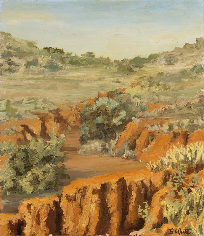 The creek bed - Outback erosion, Broken Hill by Susan Dorothea White