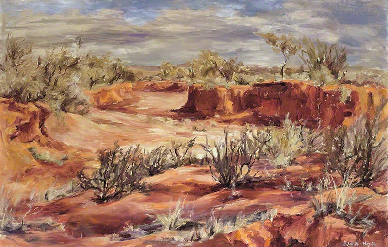 Stirling Vale Creek (drought) by Susan Dorothea White