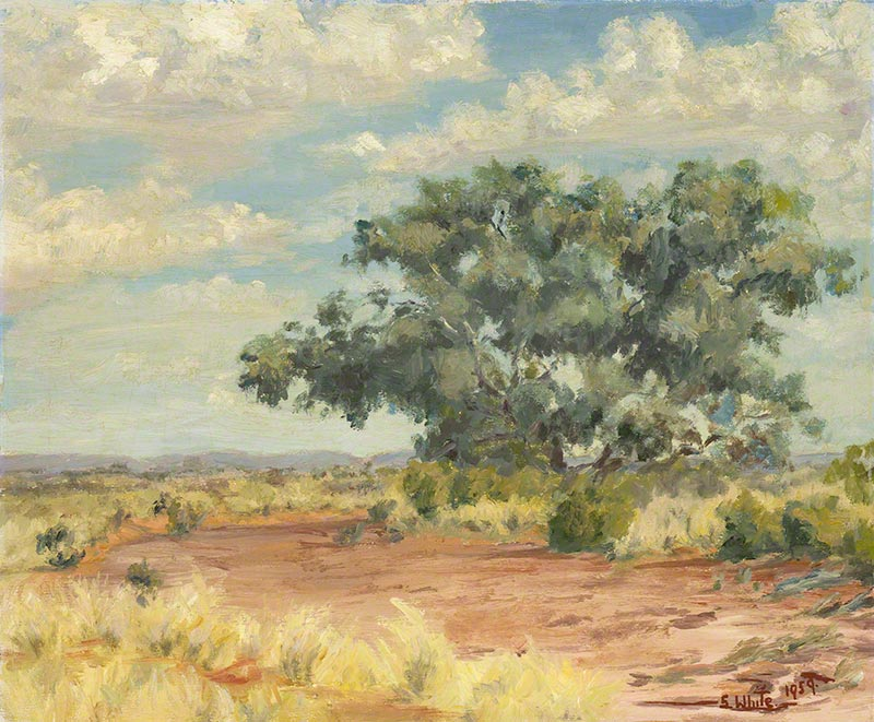 Tree by dry creek bed by Susan Dorothea White